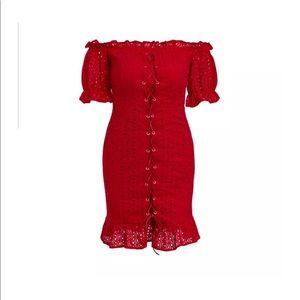 NWT Small Red Hot Mini Dress